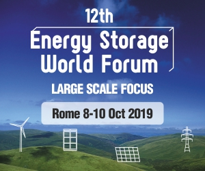 12th Energy Storage Forum 2019